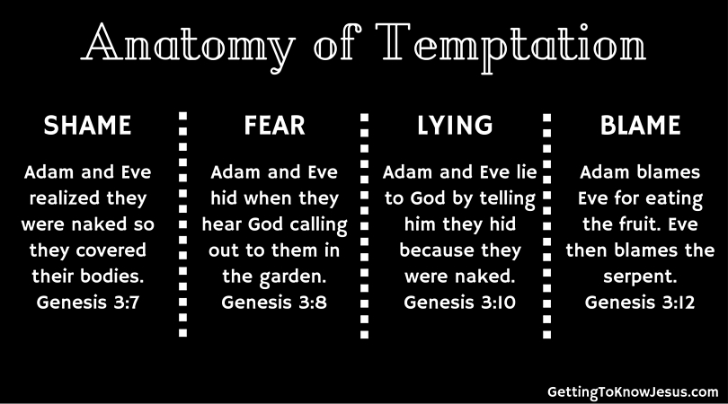 An Anatomy Of Temptation Getting To Know Jesus