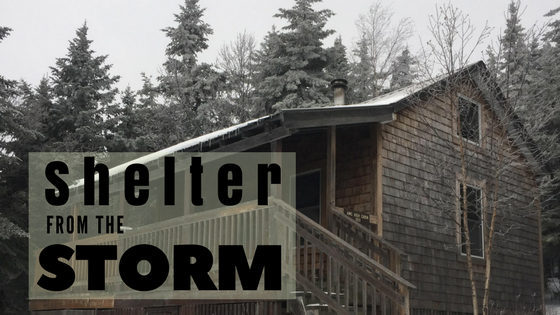 Shelter From The Storm (1)