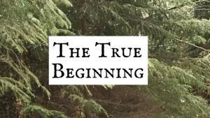 The True Beginning