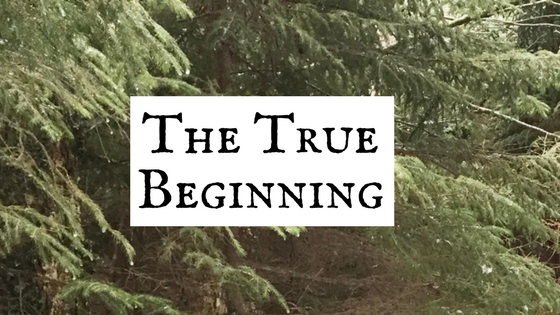 featured image - the true beginning